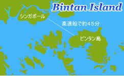 シンガポールからビンタン島へ