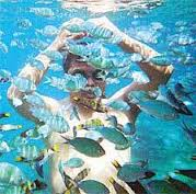 低予算で楽しむ東南アジアのビーチリゾート5ヵ国選