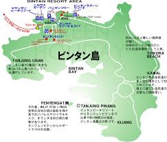ビンタン島の地図