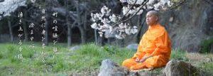 タイの僧侶を写真に勝手に撮っちゃダメ