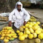 パキスタンカレーは旨い!その相棒、塩ラッシーの作り方