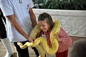 バンコクのスネークファームでニシキヘビと記念撮影