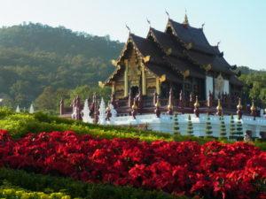 チェンマイで自然を楽しむ旅