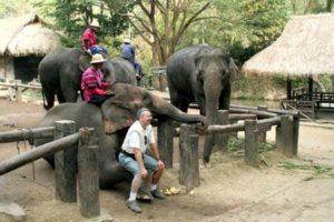 ゾウの腕に乗って写真も撮れます♡