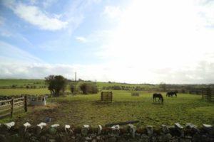 アイルランド、シャノン空港からゴールウェイへの道中風景