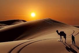 モロッコサハラ砂漠の観光ガイド