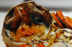 上海蟹はダイオキシン汚染されてます