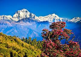 ネパールの人気 & おすすめ観光スポット【まとめ】