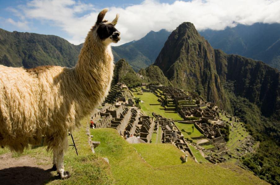 ペルーの人気観光スポット & 美味しい料理【まとめ】