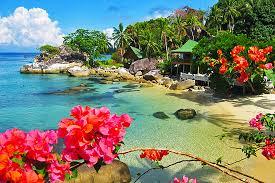 ダイバー憧れの穴場リゾート「ティオマン島」(マレーシア) 【まとめ】