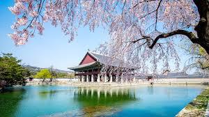 観光のベストシーズン「春」のソウルの楽しみ方