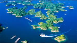 【九十九島】絶景&グルメ&水族館を満喫しよう!